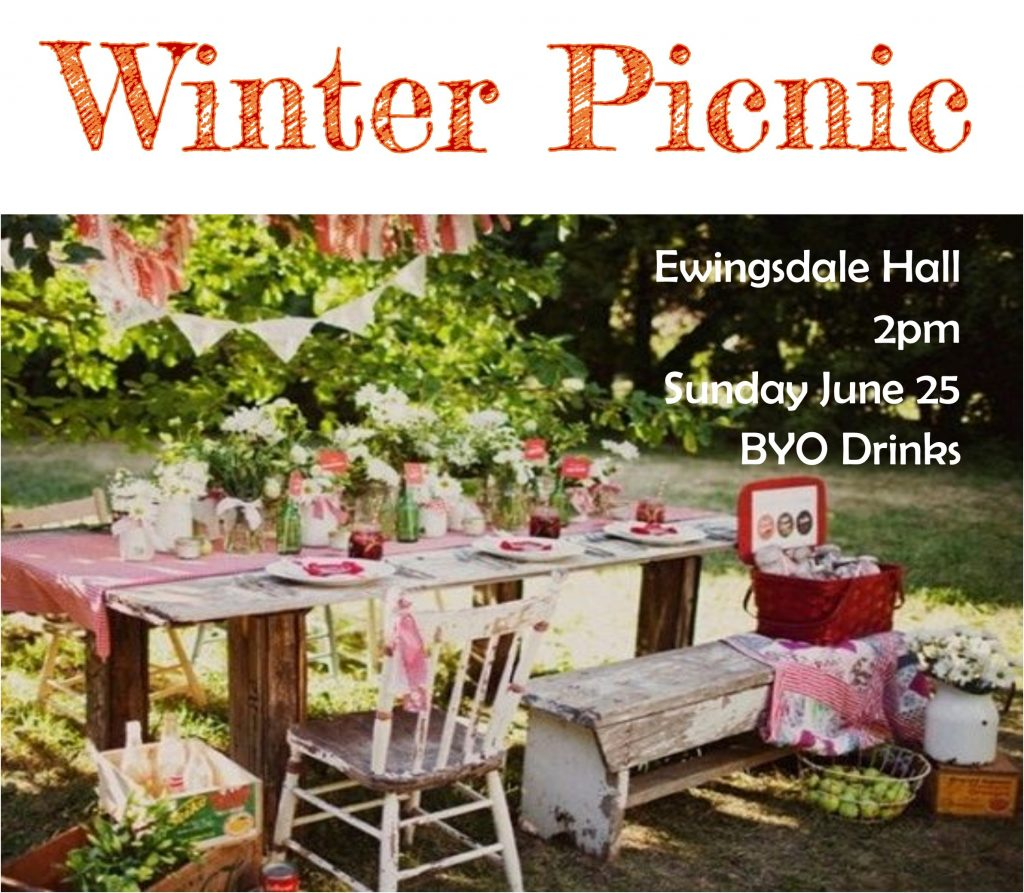 winter-picnic